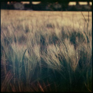 2014_Spitzingsee_Orwo_005-Edit