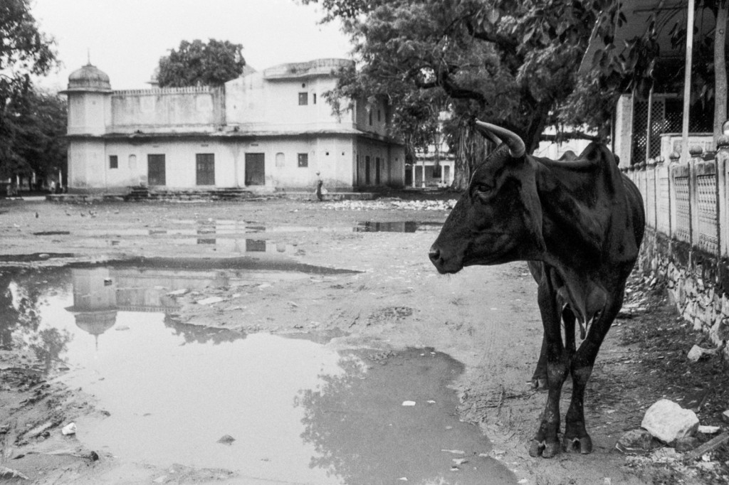 201508_India_KB7_Foma400_003-Edit